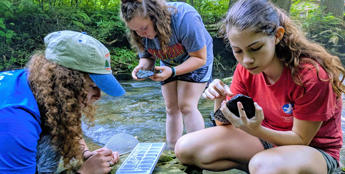 Students examine items from a stream bed.