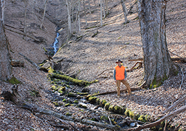 A photo of Bill Limpert standing by a stream that flows through his property.