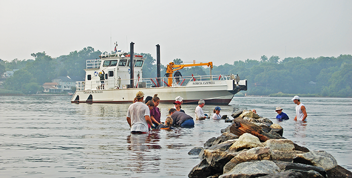 07-06-08-South-River-oyster-planting-MD-restoration_695x352.png