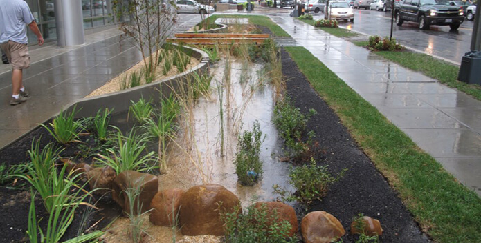curbside rain garden DC-DOEE 695x352