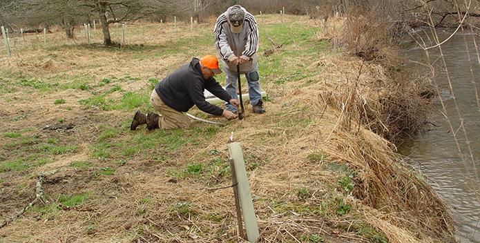pa buffer planting 695x352
