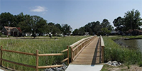Image of wetland restoration.