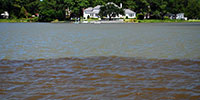Algal bloom encroaching on a waterfront home. Photo by Andrea Moran/CBF Staff