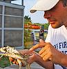 A teacher examines a blue crab. Photo by Kristan Honaker