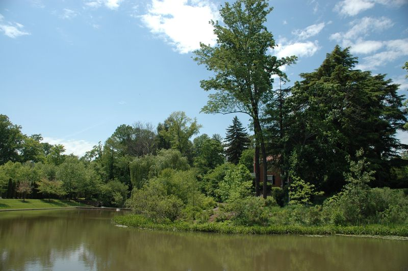 Image of the Dell on the grounds of the University of Virginia serves as a stormwater retention and treatment facility.